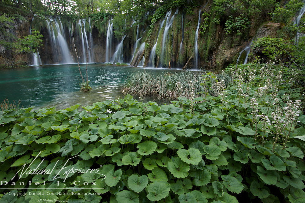 Waterfalls in Plitvice Lakes National Park, Croatia.