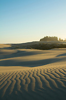 Oregon Dunes National Recreation Area near Florence, Oregon.