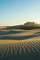 Oregon Dunes National Recreation Area near Florence, Oregon.