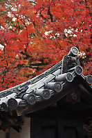 Closeup of traditional Japanese clay roof tile, Kawara, eaves, ornament detail in colorful autumn scenery at Daigo-ji temple, Daigoji complex in Kyoto, Japan