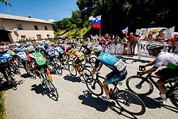 Mark Cavendish (GBR) of Team Dimension Data and peloton during 2nd Stage of 26th Tour of Slovenia 2019 cycling race between Maribor and  Celje (146,3 km), on June 20, 2019 in Celje, Maribor, Slovenia. Photo by Vid Ponikvar / Sportida