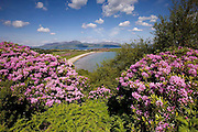 Springtime view across Carradale bay towards the island of Arran, Kintyre, Argyll
