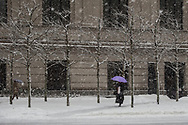 Battling a snow storm in front of the Metropolitan Museum of Art