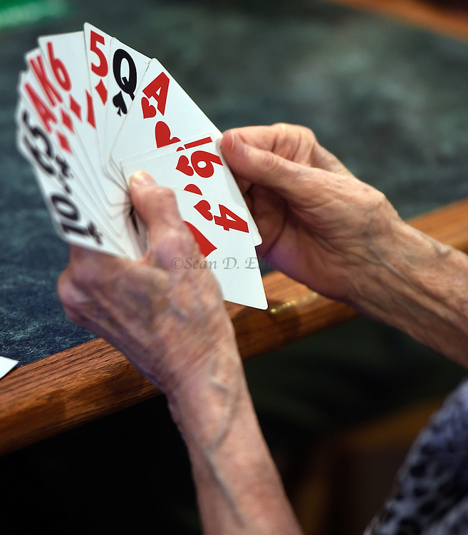7/5/16 :: REGION :: BALDELLI :: Genevieve Rafferty arranges her cards as members of the Faire Harbor Bridge Club plays their weekly game Tuesday, July 5, 2016 at The Lyme Tavern in Niantic. The club has been playing for over 100-years. (Sean D. Elliot/The Day)