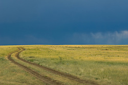 Rural dirt road under a dark sky, winding up a grass covered hillside