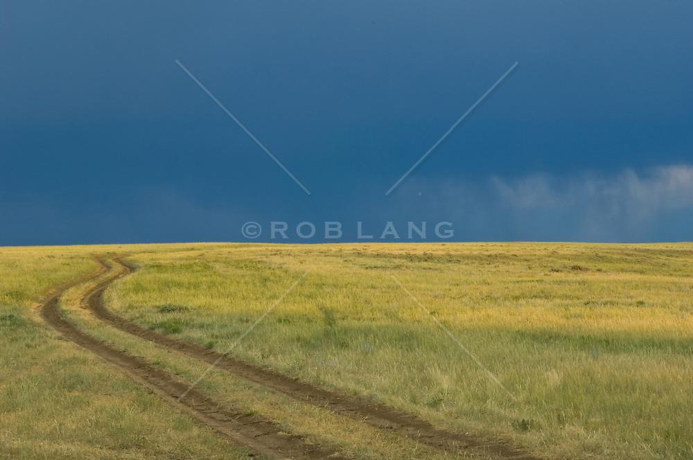 Rural dirt road under a dark sky, winding up a grass covered hillside