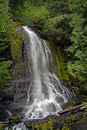 A beautiful falls beside the Stevens Canyon road in Ohamapecosh area of Mount Rainier National Park