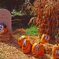 Halloween display in Hastings on Hudson New York