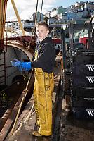 Entladen der Julie von Ladram, einem Trawler, im Hafen von Brixham, Devon, Großbritannien. // Unloading the Julie of Ladram, a trawler, in Brixham harbour, Devon, Great Britain. //  <br /> Déchargement du chalutier Julie of Ladram, dans le port de Brixham, dans le Devon, au Royaume-Uni.