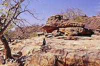 Mali,Dogon country -