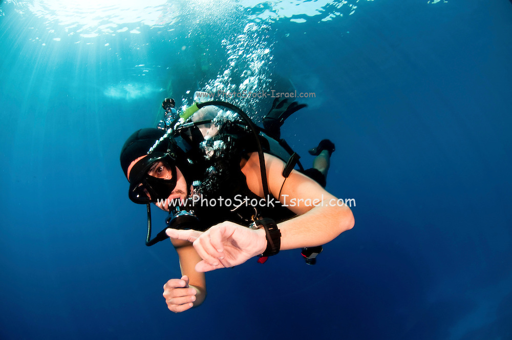 Scuba Diver underwater Photographed at Ras Mohammed National Park, Sinai, Egypt