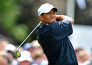 Tiger Woods at the 2009 US Open Golf Tournament at Bethpage State Park in N.Y.