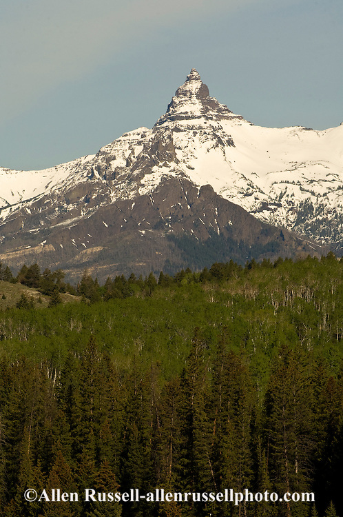 Pilot Peak, Absaroka Range, Shoshone National Forest, viewed from Beartooth Scenic Byway, Wyoming
