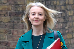 © Licensed to London News Pictures. 19/03/2019. London, UK. Liz Truss - Chief Secretary to the Treasury arrives in Downing Street for the weekly Cabinet meeting. Photo credit: Dinendra Haria/LNP