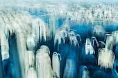Future & The City