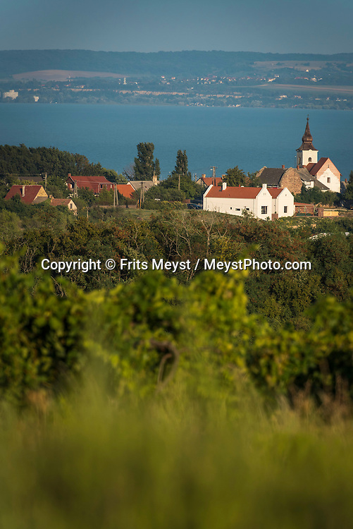 Balaton, Hungary, August 2015. The Landscape between Veszprem and Balatonfured. Lake Balaton is a freshwater lake in the Transdanubian region of Hungary. It is the largest lake in Central Europe and one of the region's foremost tourist destinations. The mountainous region of the northern shore is known both for its historic character and as a major wine region, while the flat southern shore is known for its resort towns. Photo by Frits Meyst / MeystPhoto.com