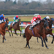 Lingfield 31st January