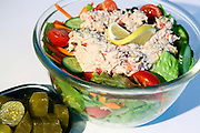 A bowl of salad with tuna fish