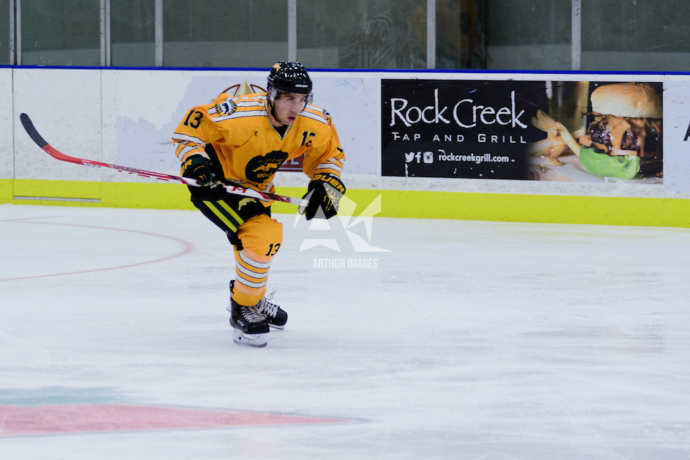 1st year forward Tristan Frei (13) of the Regina Cougars in action during the Men's Hockey Home Game on November 5 at Co-operators arena. Credit: Arthur Ward/Arthur Images
