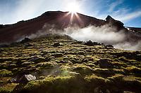 Geothermal steam by Brennisteinsalda in Landmannalaugar, Iceland. Jarðhitagufa við Brennisteinsöldu í Landmannalaugum.