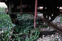 La rete ferroviaria secondaria della Penisola Salentina, costituita il 1° luglio 1931, rappresenta lorganico raggruppamento delle linee già esercitate dalla Società per le Ferrovie Salentine e dalla Società per le Ferrovie Sussidiate, integrate da due tronchi esercitati dalle Ferrovie dello Stato..Nellottobre dello stesso anno, lesercizio della rete ferroviaria così costituita viene concessa alla Società per le Ferrovie Sud-Est..Le aree pugliesi attraversate dalla società ferroviaria sono larea barese, la fascia Taranto-Brindisi e larea leccese-Salentina, collegando fra loro i capoluoghi di Bari, Taranto e Lecce, nonché 85 comuni..Il reportage fotografico sulle Ferrovie Sud Est intende testimoniare levoluzione tecnologica che, durante gli anni, ha modificato e migliorato il servizio ferroviario e la convivenza del progresso con tracce del passato, attraverso un viaggio tra le stazioni e i depositi..