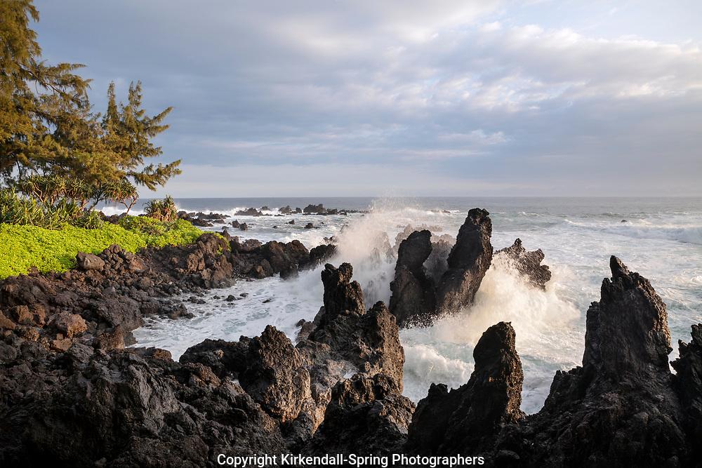 HI00385-00...HAWAI'I - Rocky coastline at Laupahoehoe Point Park along the Hamakua Coast on the island of Hawai'i.