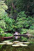 Tropical Spice Garden.