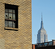 Empire State Building, New York City Contrast