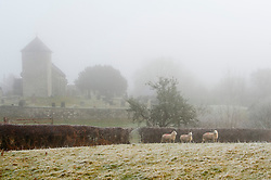 © Licensed to London News Pictures. 21/01/2020. Llanddewi'r Cwm , Powys, Wales, UK. St David's church in the tiny village of Llanddewi'r Cwm is surrounded by fog. Valleys are covered in fog and frost after temperatures fell below freezing last night near Builth Wells in Powys, Wales, UK. Photo credit: Graham M. Lawrence/LNP