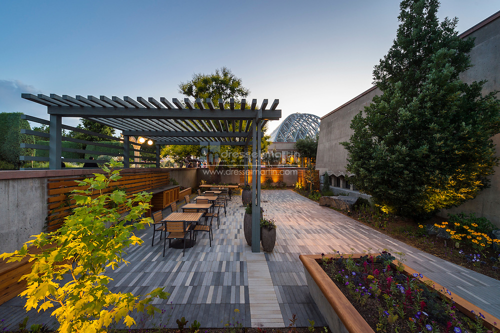 sensory garden evening
