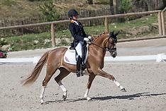 Fontainebleau 2012 EK Ponies