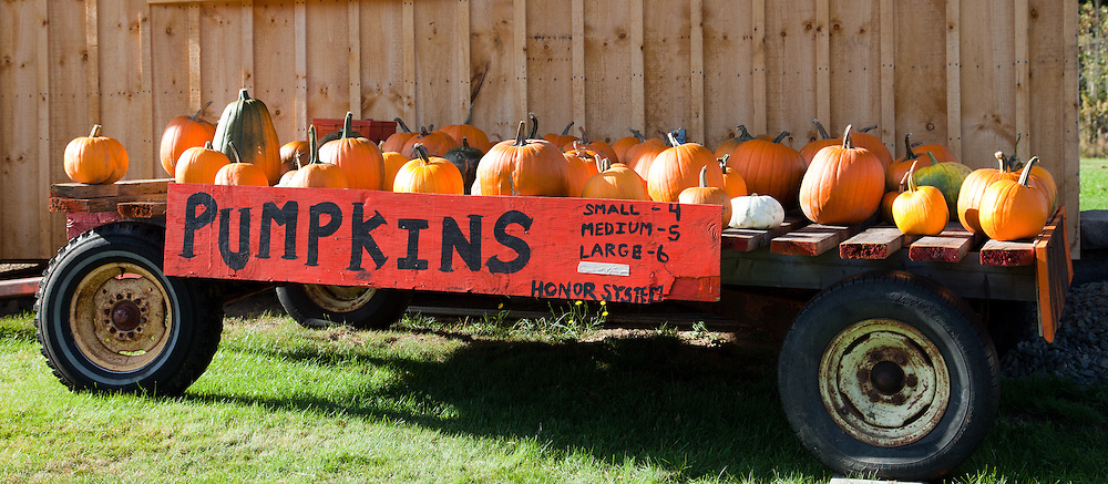 Roadside stand selling pumpkins, Errol area, New Hampshire.