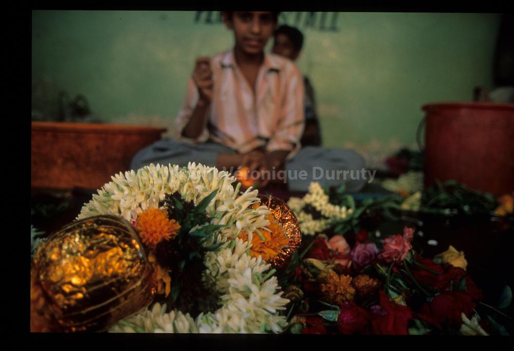 Inde du Sud // Southern India