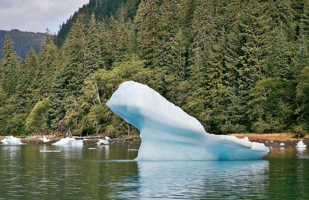 LeConte Bay Glacial Ice