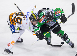 19.01.2014, Hala Tivoli, Ljubljana, SLO, EBEL, HDD Telemach Olimpija Ljubljana vs Moser Medical Graz 99ers, 2. Plazierungsrunde, in picture Greg Day (Graz 99ers)  and Ales Music (HDD Telemach Olimpija) during the Erste Bank Icehockey League 2nd Placing round  between HDD Telemach Olimpija Ljubljana and Moser Medical Graz 99ers at the Hala Tivoli, Ljubljana, Slovenia on 2014/01/19. Photo by Vid Ponikvar / Sportida