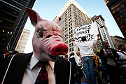 Protesters from the Occupy Wall Street demonstrate in the Zucotti Park against greed and inequality. Their ire is particularly focused on the world of finance. A man in a pig mask in the foreground.