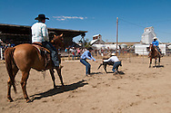 Wilsall Ranch Rodeo, Montana, Team Branding, Lazy SR Ranch Team, Cleve Swandel, Cassie Woosley, Kurt Mraz, Cody Wilsey