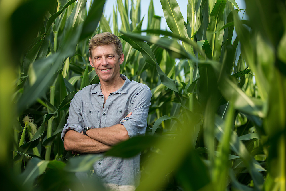 Crop farmer and GFO district 7 director for Waterloo and Oxford, Kevin Armstrong stands in his corn field near Woodstock, Ontario, Monday,  August 4, 2014.<br /> Farmers Forum/ Geoff Robins