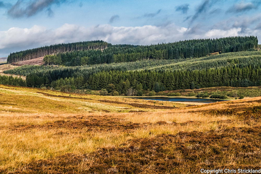 Alemoor, Hawick, Scottish Borders, UK. 23rd September 2017. Forestry and moorland surrounding Alemoor Loch in the Scottish Borders on an autumn morning.