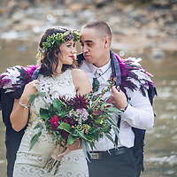 intimate wedding on the beautiful coromandel peninsula at sailors grave bay tairua felicity jean photography small beach ceremony cool ideas for your wedding 2016/2017 flowers venue's nibbles dresses sign boards dressing up your pets props for photos ceremony styling photo booths bands cakes and more