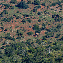 Paisagem na África do Sul (Paisagem) fotografado na África do Sul. Registro feito em 2019.<br /> ⠀<br /> ⠀<br /> <br /> <br /> <br /> <br /> ENGLISH: South Africa Landscape photographed in South Africa. Picture made in 2019.
