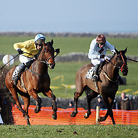 Mywayorthehighway with D O' Connor and  Toby Jug with J.T McNamara race for the finish at the 2007 Bellhabour Point to Point on Sunday.<br /><br /><br /><br />Photograph by Yvonne Vaughan.