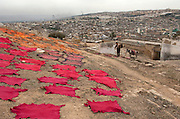 Men labour through the stench of animal hides in the tanneries of the medieval city of Fes. Methods have changed very little over the centuries.