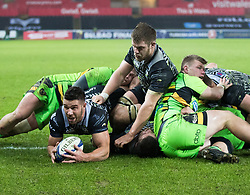 Ospreys' Rhys Webb scores his sides fourth try<br /> <br /> Photographer Simon King/Replay Images<br /> <br /> EPCR Champions Cup Round 4 - Ospreys v Northampton Saints - Sunday 17th December 2017 - Parc y Scarlets - Llanelli<br /> <br /> World Copyright © 2017 Replay Images. All rights reserved. info@replayimages.co.uk - www.replayimages.co.uk