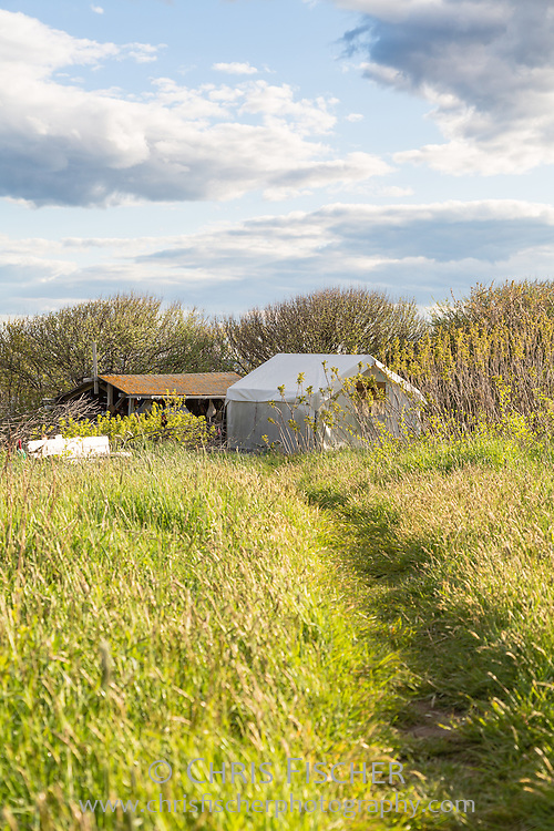 The base camp on Stratton Island consists of an expedition tent on a raised wooden platform along with an outdoor kitchen. It is located in a mature apple orchard in close proximity to the tern nesting beaches.