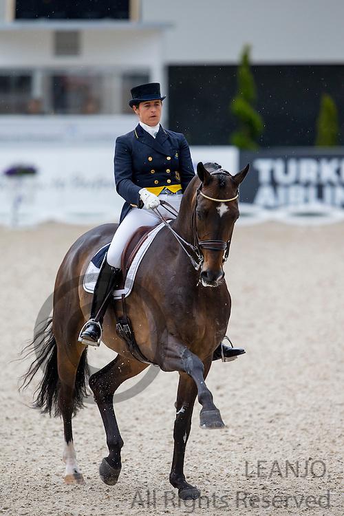 Tinne Vilhelmson Silfven - Don Auriello<br /> World Equestrian Festival, CHIO Aachen 2015<br /> &copy; DigiShots