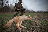 COYOTE HUNTER WITH A HARVESTED COYOTE