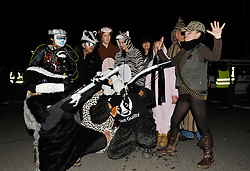 © Licensed to London News Pictures. 06/10/2013.  Williton, Somerset, UK.  The Somerset badger patrol, some in fancy dress, gathers in Williton for the final patrol as the cull comes to an end in Somerset. Campaigners against the cull went on patrol looking for dead or wounded badgers on public footpaths and roads.  The Government has licensed a pilot badger cull in parts of Somerset and Gloucestershire as part of efforts to reduce bovine tuberculosis in cows on farms.  06 October 2013.<br /> Photo credit : Simon Chapman/LNP