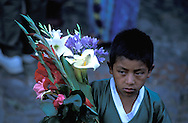 at the flower Market, Chichicastenango, Highlands, Guatemala, Central America