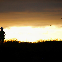 South America, Ecuador, Galapagos Islands. Silhouette at sunset on Genovese Island in the Galapagos.